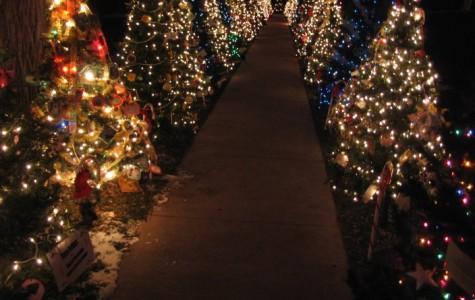 Beautiful Christmas Lights Galore!